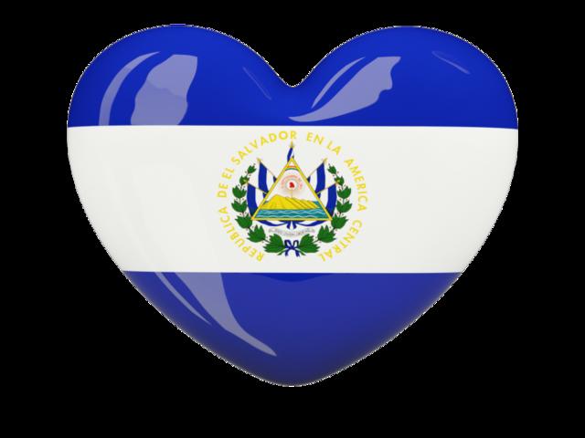 Proyecto Salvador